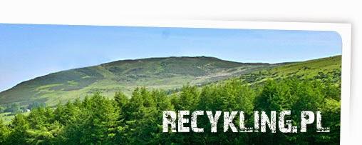 http://www.recykling.pl/recykling/