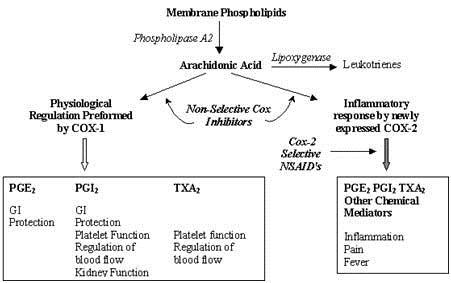 mekanisme kerja anti inflamasi non steroid