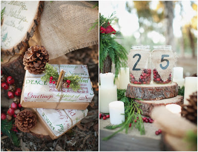 http://rusticweddingchic.com/winter-rustic-wedding-ideas-brianna-venzke-photography
