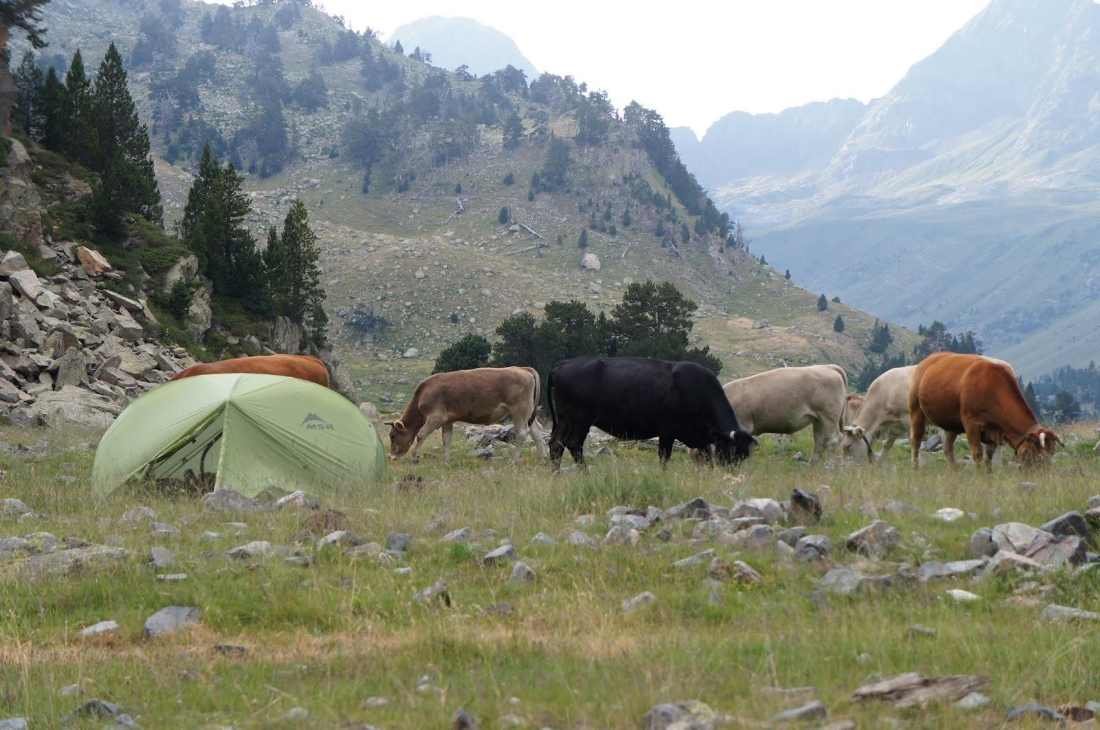 Vos plus belles photos de camping HRP2012+%2528760%2529