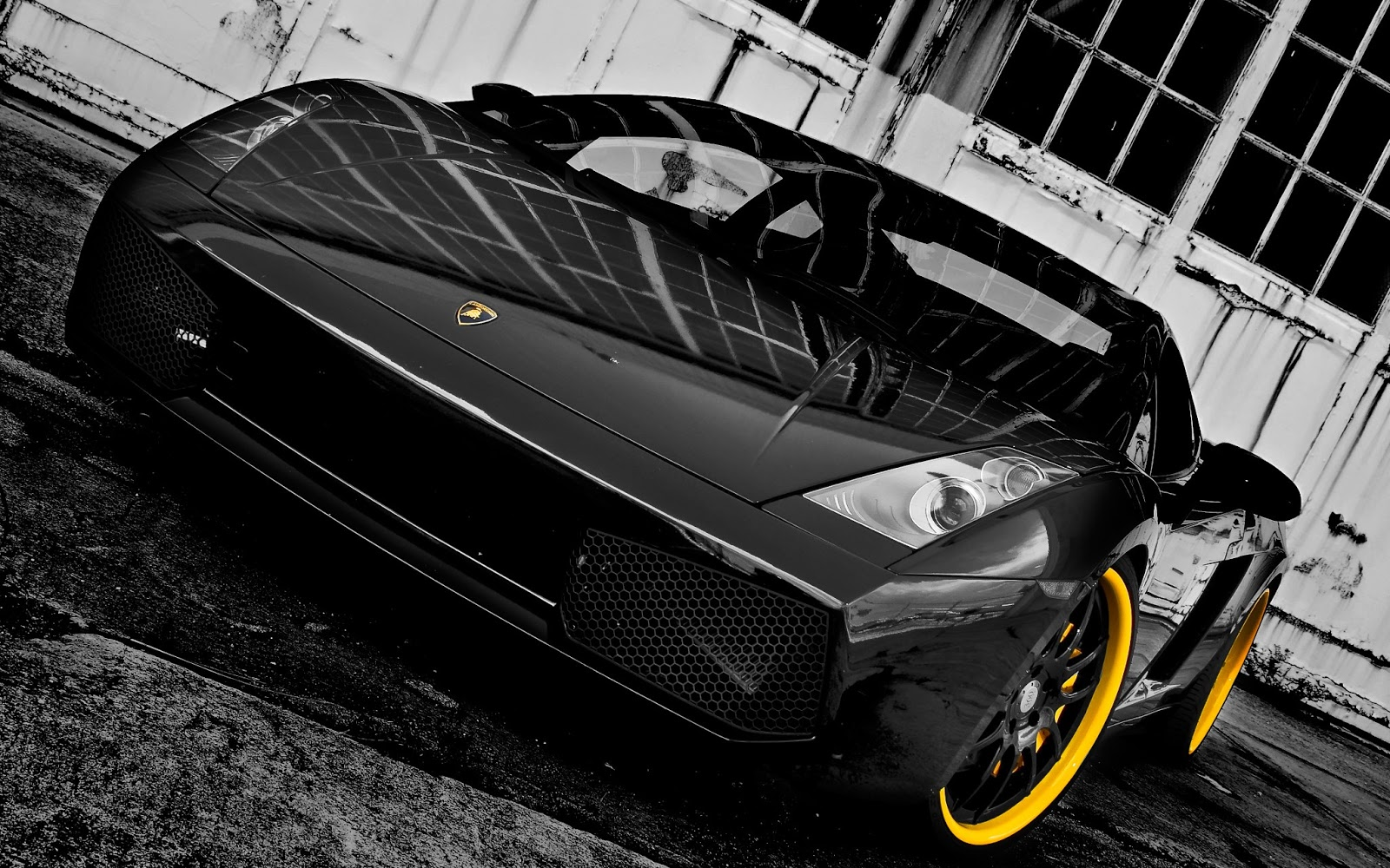 Luxury Lamborghini Cars Lamborghini Gallardo Black