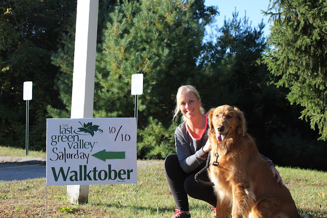 hiking with your dog at Pequot Trails Lantern Hill #walktober