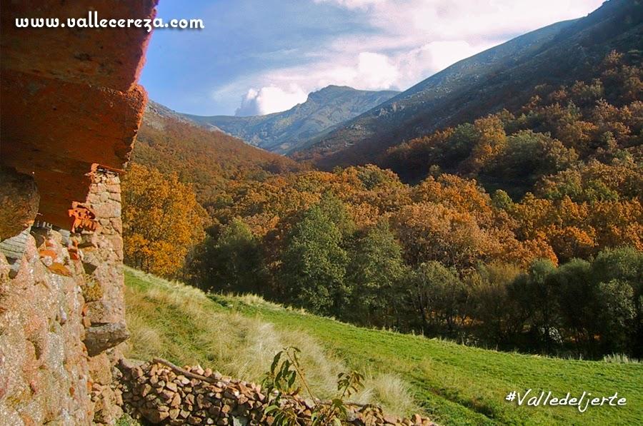 Bosques del Valle del Jerte