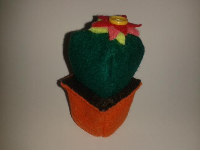 Cosiendo a mares puede achucharse un cactus - Como transplantar cactus ...