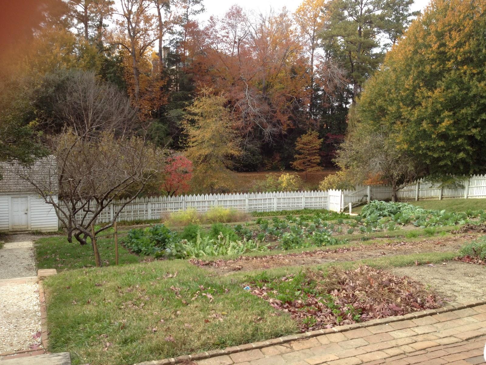 Garden Tour: Governor\'s Palace Kitchen Garden