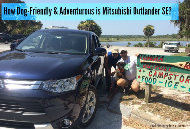 Oz the Terrier asks: Is Mitsubishi Outlander SE Dog-Friendly & Adventurous? #DriveMitsubishi