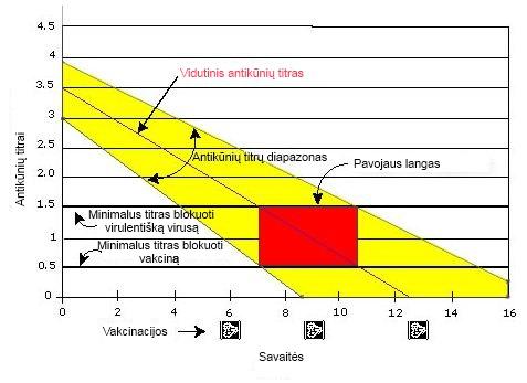 Gyvūnų vakcinavimas: antikūnų titrų mažėjimas