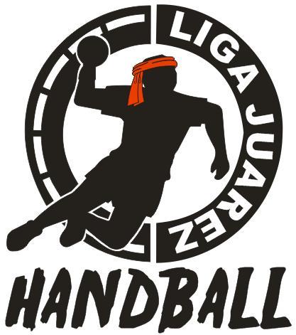 ligen handball