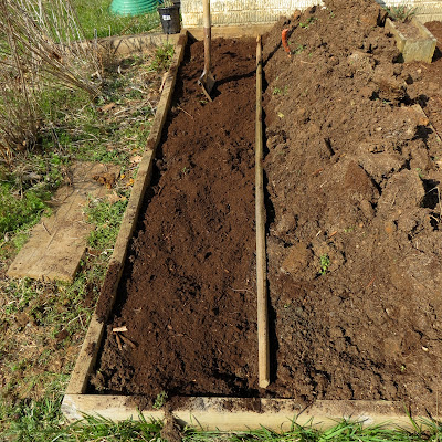 how to add peat moss to soil