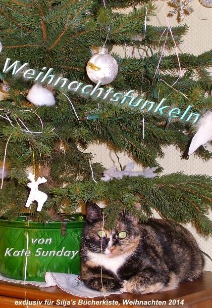 http://siljasbuecherkiste.me/2014/12/21/torchen-nr-21-kate-sunday-weihnachtsfunkeln/#more-2674