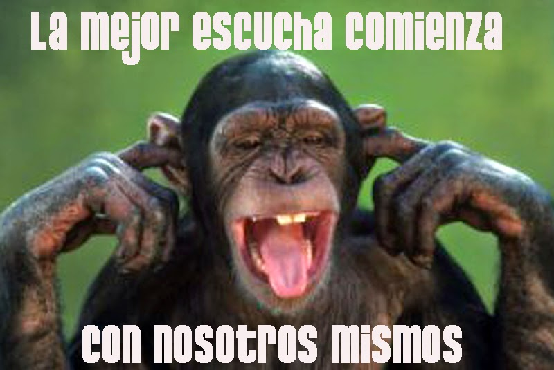Blog Diego Larrea