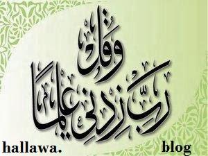 hallawa.blogspolt.nl
