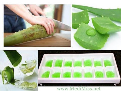 HOW to FREEZE Aloe Vera GEL