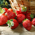 Why You Should Eat Strawberries Every Day?