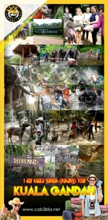 TOUR PACKAGE : ELEPHANT SANCTUARY