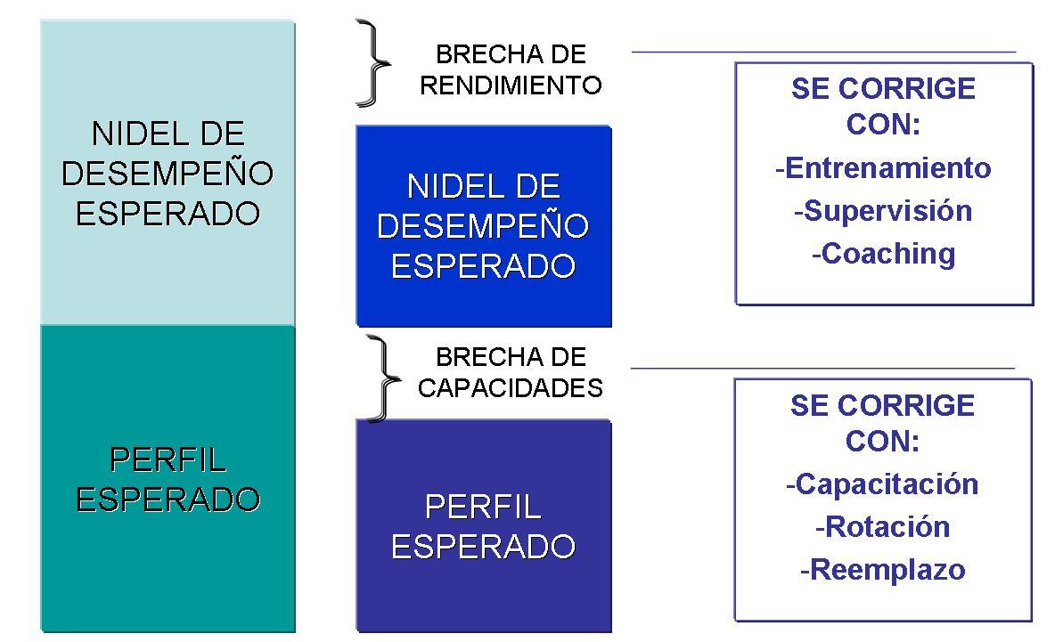 Plan de Operaciones | Gestionando empresas