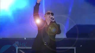 Pitbull Performance