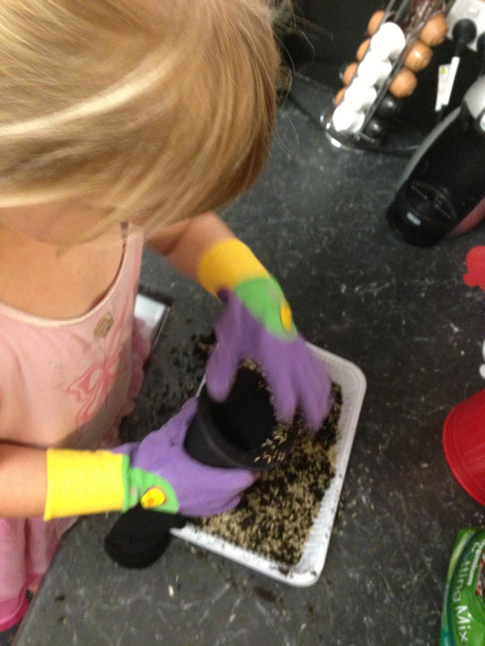 Caterpillar chia pets paper tree for Soil xat cut off
