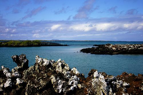 Isla Tiburón