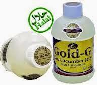 Obat Herbal Radang Panggul