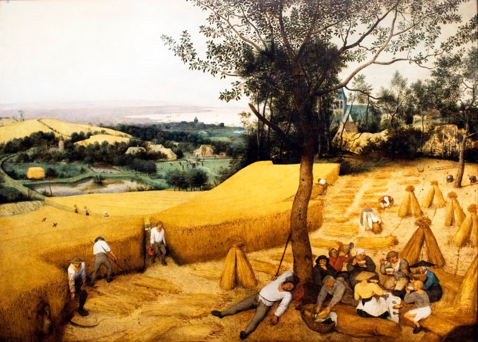 The Corn Harvest