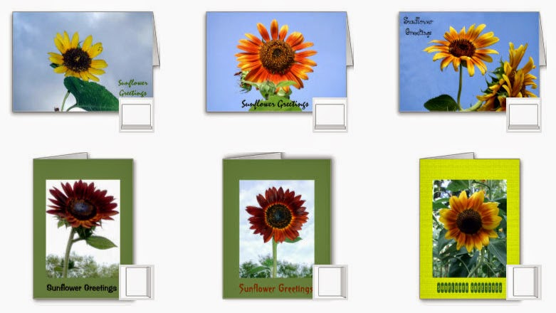 sunflower greetings card mosaic