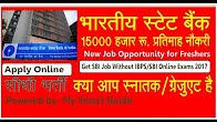 SBI New Special Jobs Without IBPS Score