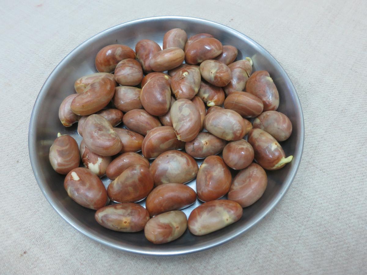 jackfruit seeds how to cook