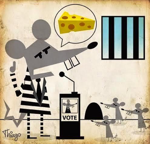 Thiago Lucas: Rats & cheese.