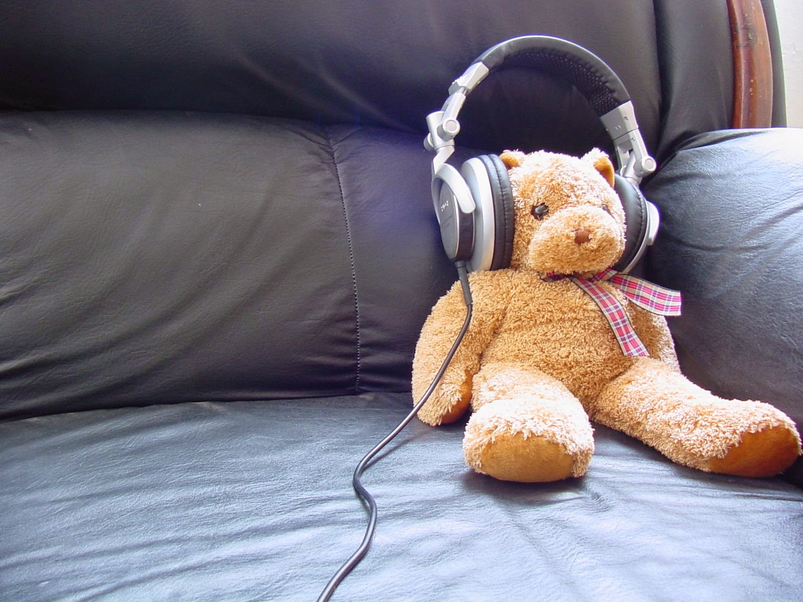 Teddy-relaxing-in-couch-headphone-music-1600x1200.jpg