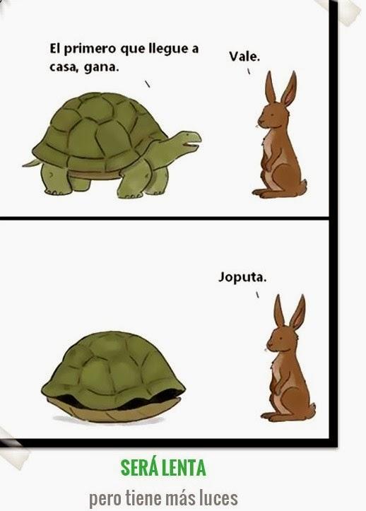 La tortuga contra la liebre