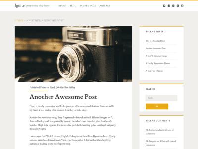 Ignite WordPress Theme