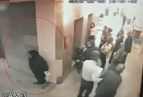 ΑΠΙΣΤΕΥΤΟ: Ηλικιωμένη τα κάνει σε διάδρομο νοσοκομείου! [video]