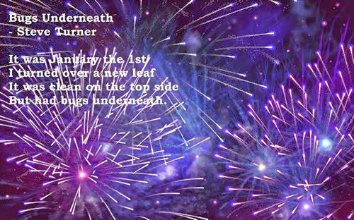 Best Funny Happy New Year Poems 2015