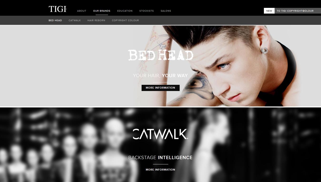thiết kế website chuyên nghiệp với idea4life