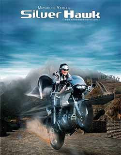 Silver Hawk 2004 Hindi Dubbed 382MB BluRay ENG 480p