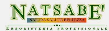 natsabe logo