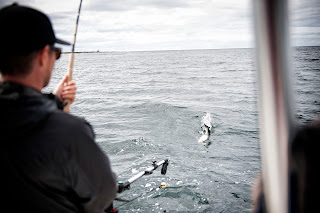 Fishing for Tyees in the Haida Gwaii with Escott Sportfishing