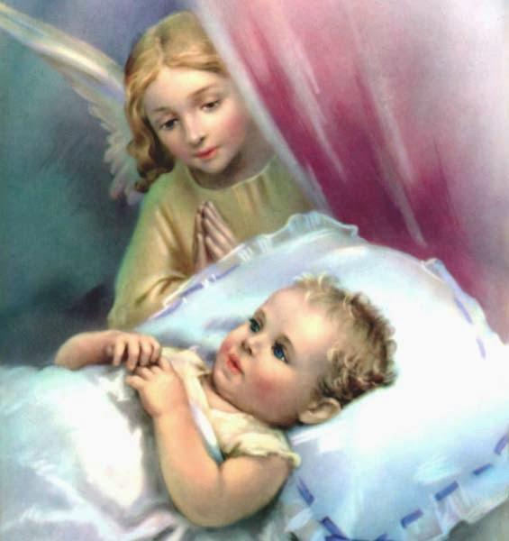 амор ангелс фото