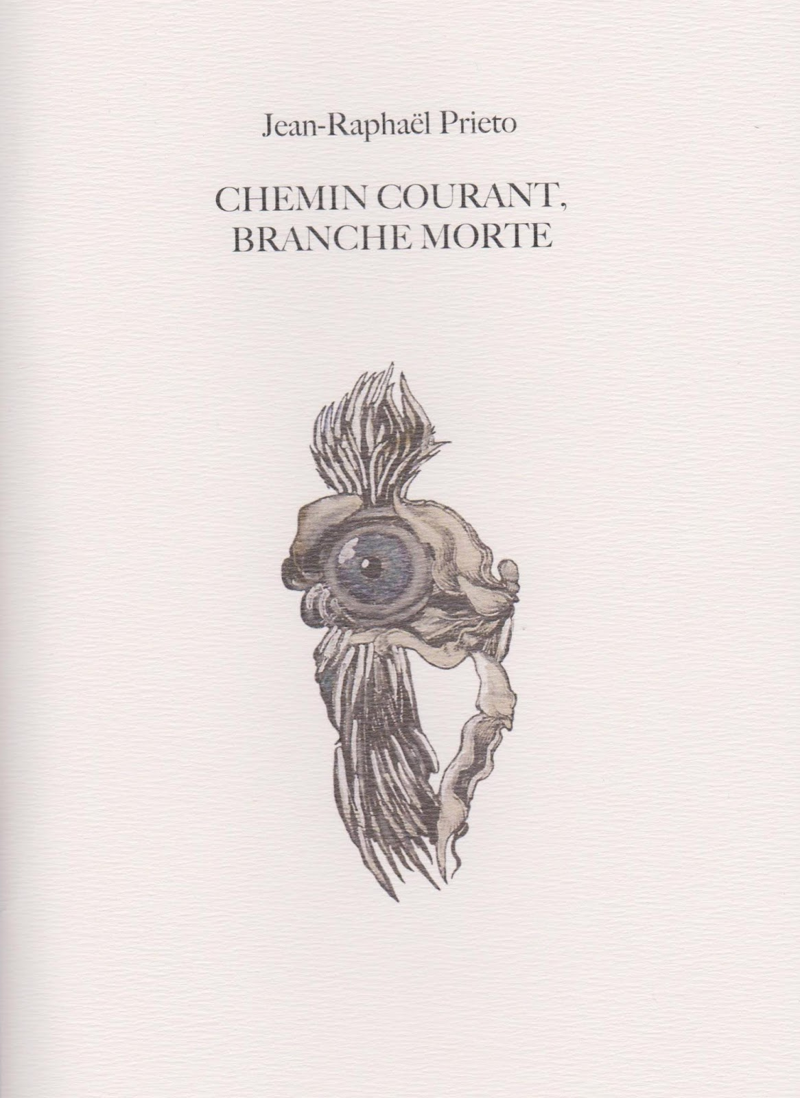 Jean-Raphaël PRIETO, Chemin courant, branche morte, Collection de l'umbo, 2018
