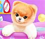 Baby Doggie Boo