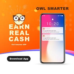 Owl Smarter