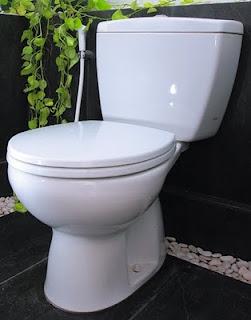Sejarah Terciptanya Closet WC