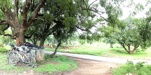 Bicyclists resting under Tamarind and Neem trees