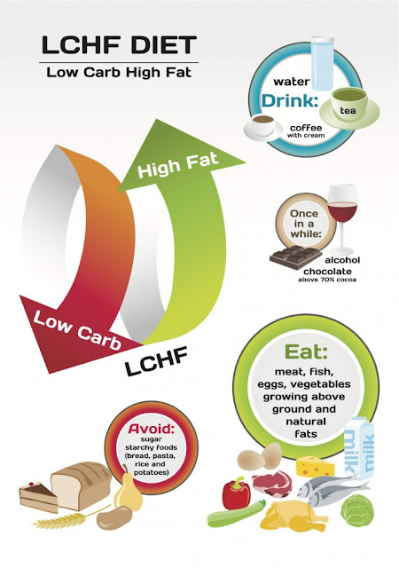 LCHF What to Eat Weight loss diet plan 2015 USA