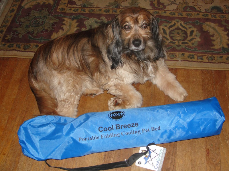 K H Cool Breeze Portable Dog Bed