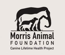 Morris Animal Foundation Golden Retriever Lifetime Study