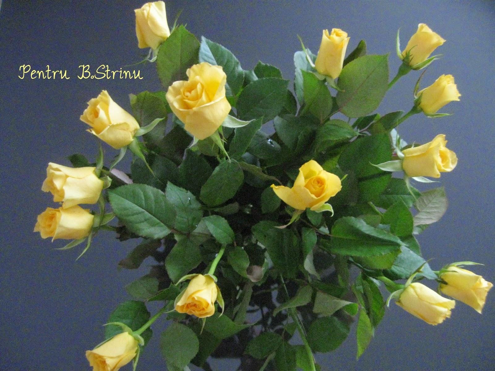 trandafiri-sarbatoresti