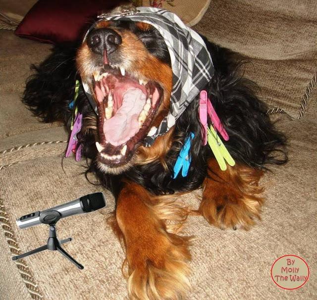 Molly The Wally Does Karaoke!
