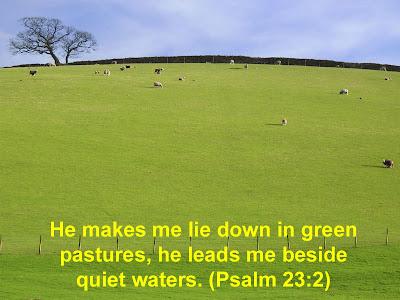 Psalm 23:2 Bible Verse